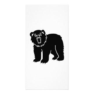 Black bear photo card