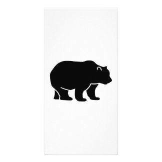 Black bear picture card