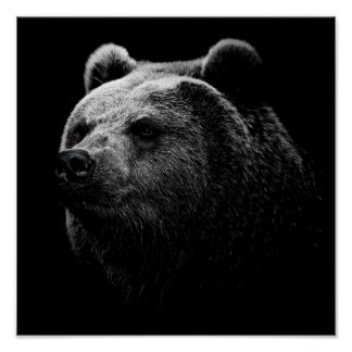 BLACK BEAR. POSTER