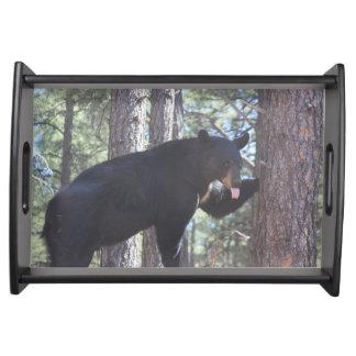 Black Bear Serving Tray