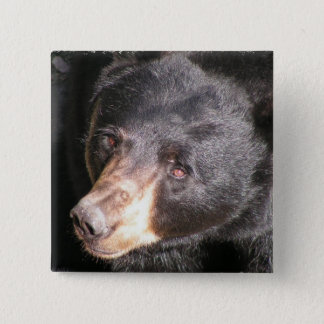 Black Bear Square Button
