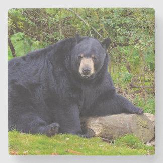 Black Bear Stone Coaster