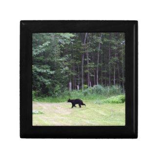 Black Bear Trinket Boxes