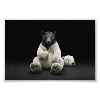 Black bear wearing polar bear costume art photo