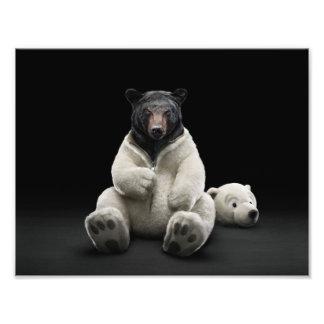 Black bear wearing polar bear costume photo art