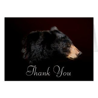 Black Bear Wildlife Thank You Card