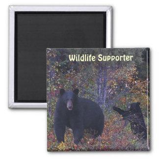 BLACK BEARS Forest Nature Magnet
