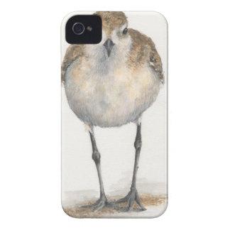 Black-bellied Plover iPhone Case--CaseMate Case-Mate iPhone 4 Case