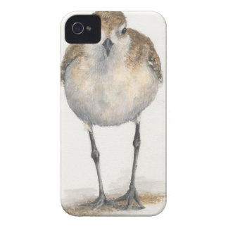 Black-bellied Plover iPhone Case--CaseMate iPhone 4 Covers