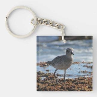 Black-bellied Plover Keychain
