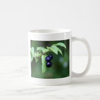 Black berried honeysuckle (Lonicera nigra) Coffee Mug