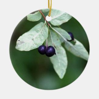 Black berried honeysuckle (Lonicera nigra) Round Ceramic Ornament