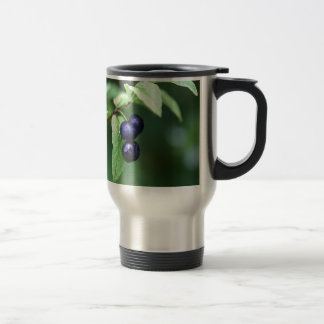 Black berried honeysuckle (Lonicera nigra) Travel Mug
