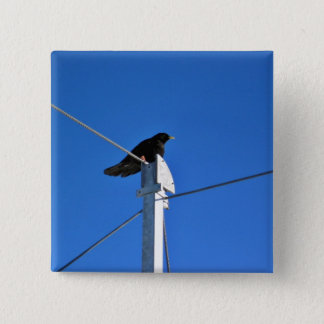 Black bird on a post 2 inch square button