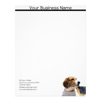 Black Brown and White Beagle Dog Letterhead