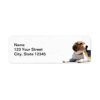 Black Brown and White Beagle Dog Return Address