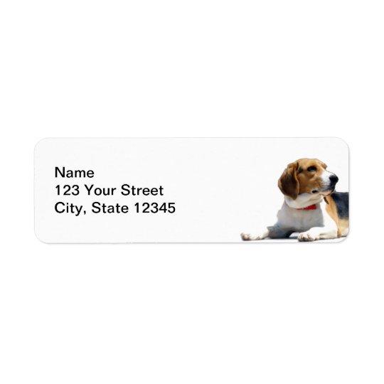 Black Brown and White Beagle Dog Return Address