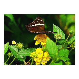 "Black Butterfly on Yellow Lantana 5"" X 7"" Invitation Card"