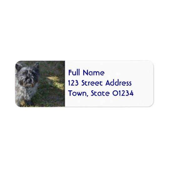 Black Cairn Terrier Return Address Label