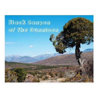 Black Canyon of the Gunnison National Park Postcard