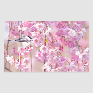 Black Cap Chickadee & Pink Weeping Willow