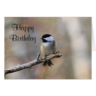Black-capped Chickadee Card