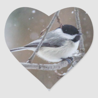 Black-capped Chickadee - Songbird Heart Sticker
