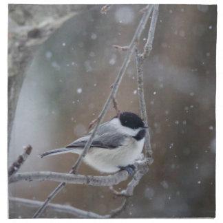 Black-capped Chickadee - Songbird Napkins