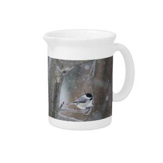 Black-capped Chickadee - Songbird Pitcher