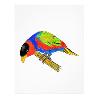 Black-capped Lory Letterhead