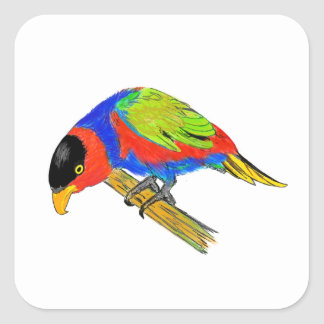 Black-capped Lory Square Sticker