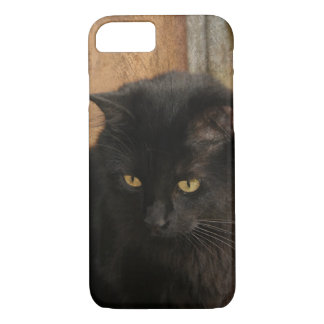 Black Cat, Amber Eyes, Earth Tones Textured Back iPhone 7 Case