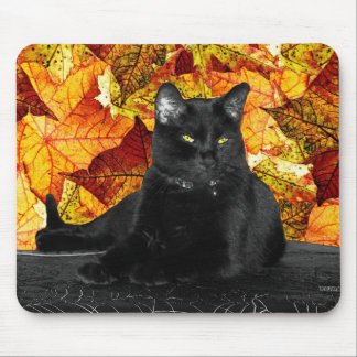 Black Cat and Fall Leaves Mouse Pad