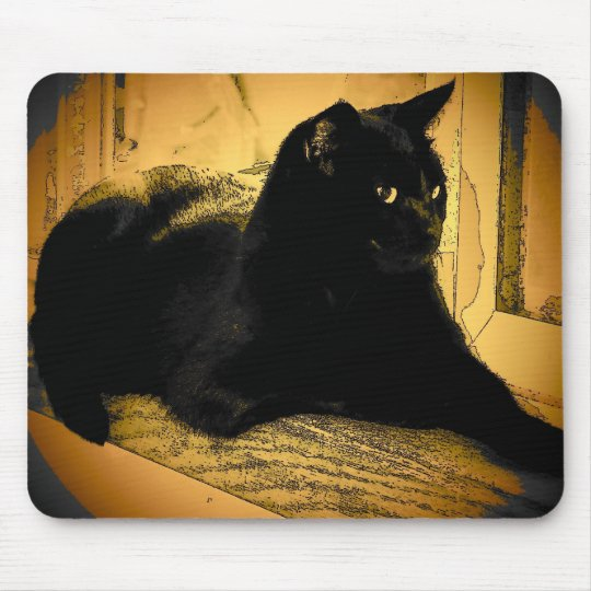 Black Cat and Orange Mouse Pad