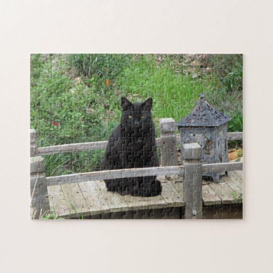 Black Cat Bridge Puzzle