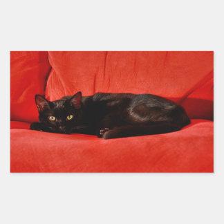Black Cat Edgar Sticker