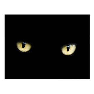 black cat eyes postcard