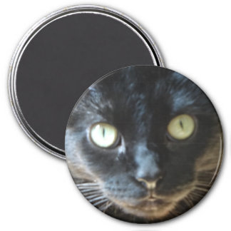Black Cat Face Magnet