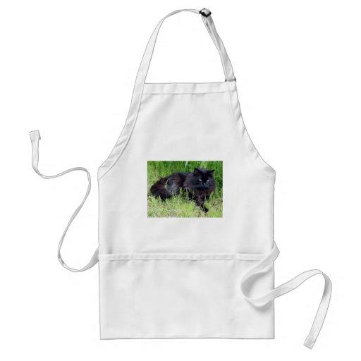 Black cat fluffy long hair feline regal proud apron