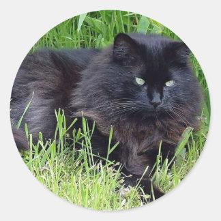 Black cat fluffy long hair feline regal proud round sticker