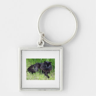 Black cat fluffy long hair feline regal proud Silver-Colored square keychain