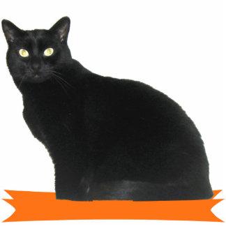 Black Cat Halloween Party Photo Sculpture