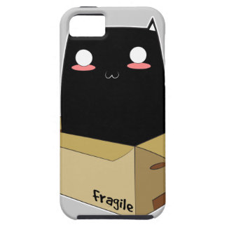 Black Cat in a Box iPhone 5 Cover
