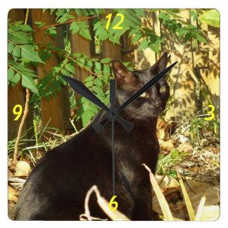 Black Cat in Morning Sun Wall Clock