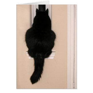 Black cat in skinny window card