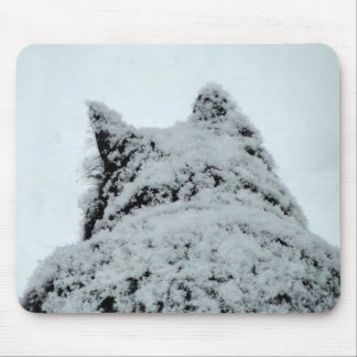 Black Cat in Snow Photography Mouse Pad