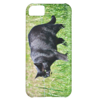 Black Cat in the Green Grass - iPhone 5 Case