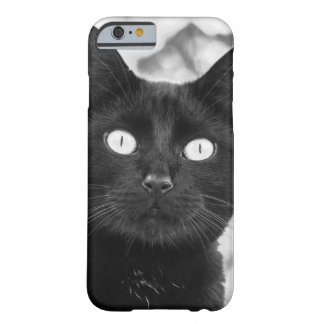 Black Cat - iPhone 6 Case Barely There iPhone 6 Case