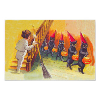 Black Cat Jack O Lanter Pumpkin Broom Photographic Print