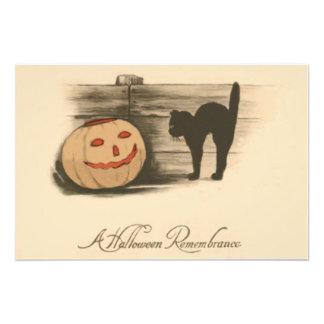 Black Cat Jack O Lantern Pumpkin Photographic Print